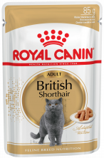 BRITISH SHORTHAIR (в соусе)